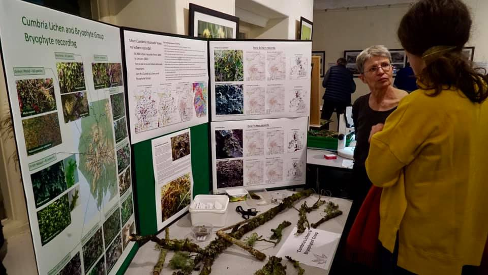 The Cumbria Lichen and Bryophyte Group stall at the Plantlife Looking Out for Small Things celebration event at Brockhole in 2020 - April Windle