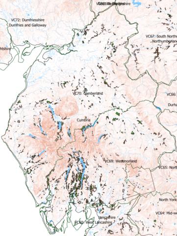 Ancient woodlands in Cumbria