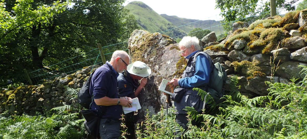 Looking at lichens on rock - Chris Cant
