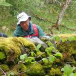 Bryologists looking at mosses and liverworts at Smardale nature reserve