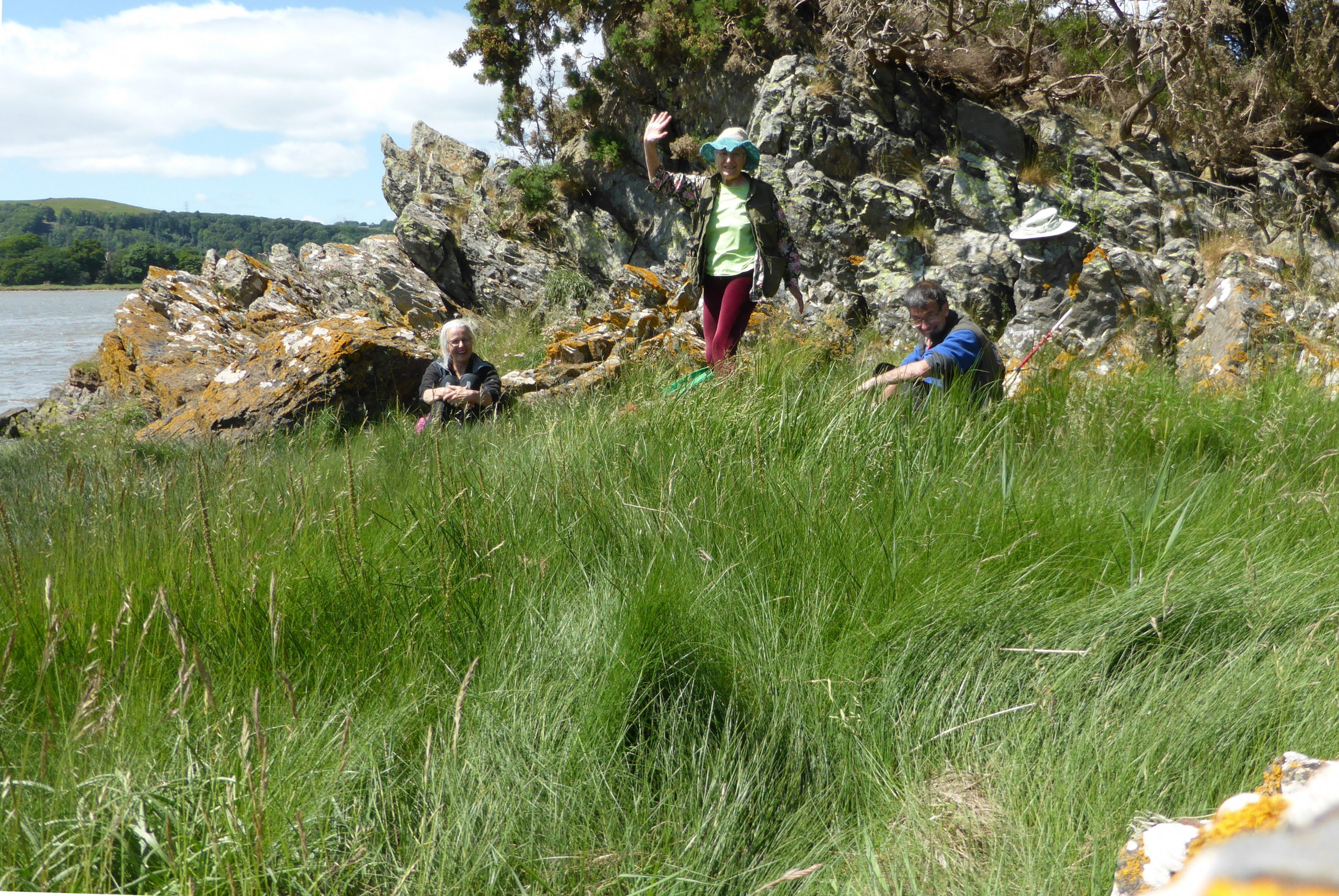 Juncus gerardii and 3 lichenologists at Roudsea