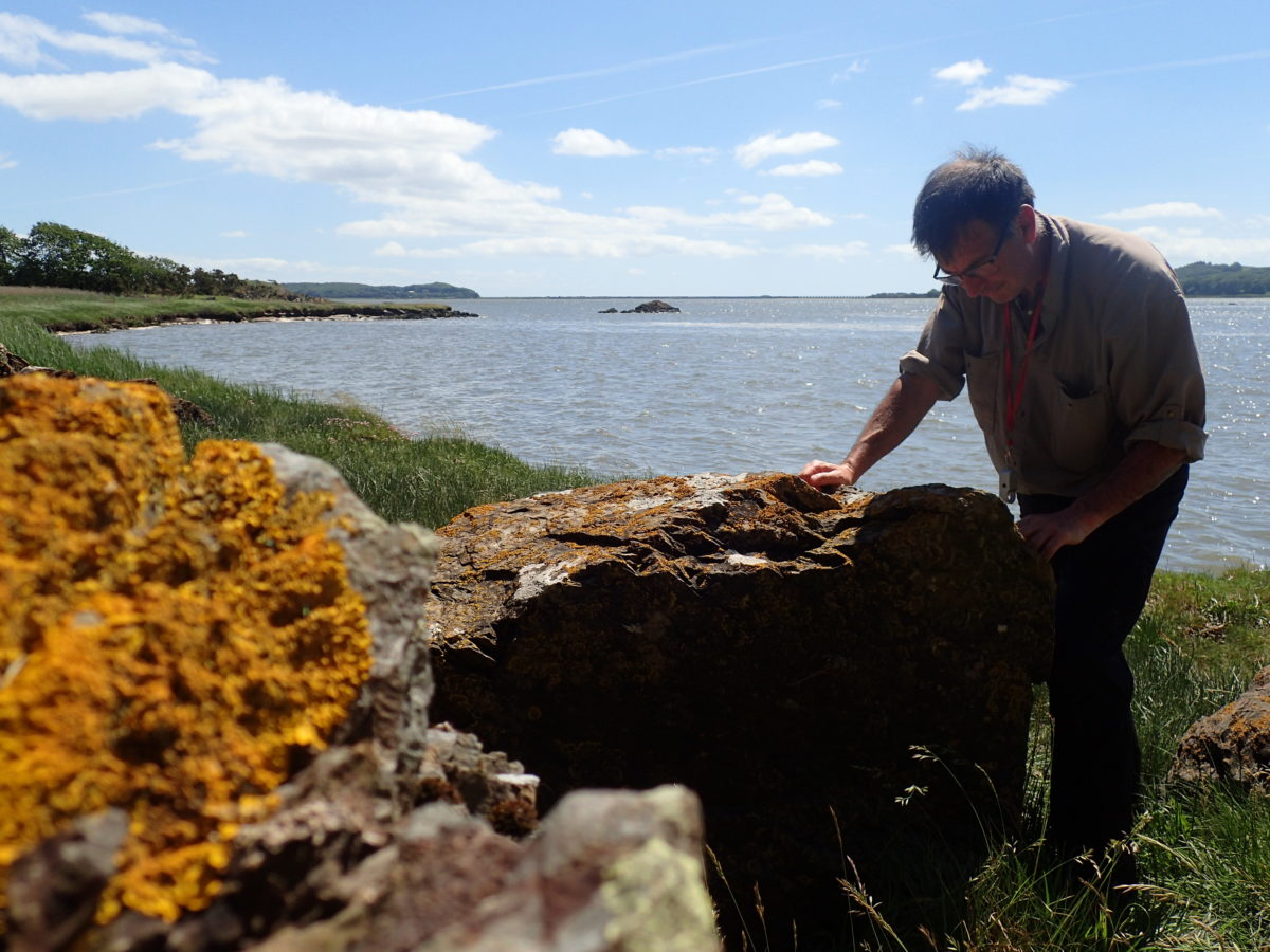 Pete Martin inspects lichens at the Roudsea coast