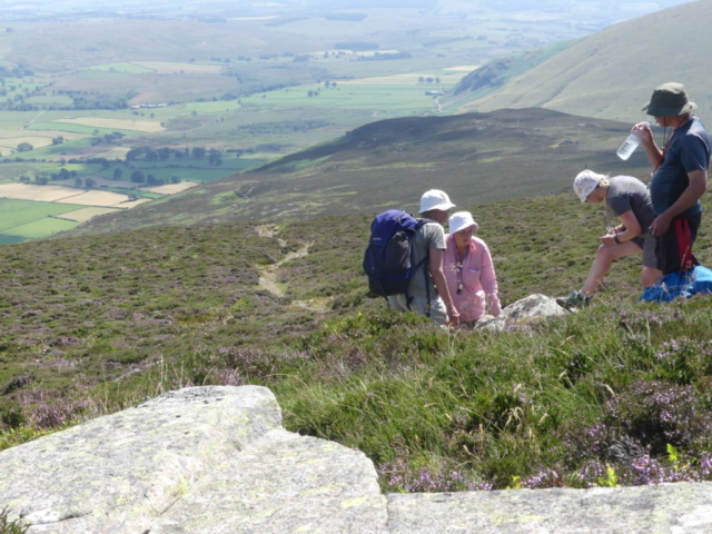 Cumbria Lichen and Bryophyte Group on Carrock Fell
